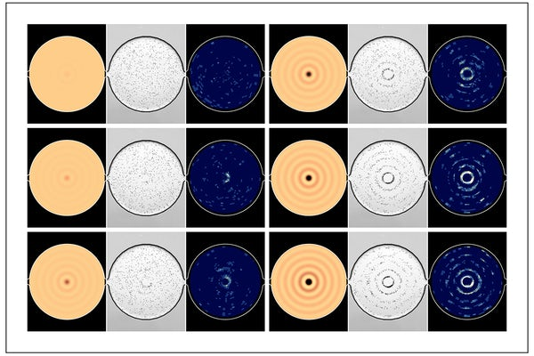 J. Mark Meacham is turning the standard practice of using microfluidic tools for scientific discovery on its head by using a living organism for real-time measurement and monitoring of acoustic microfluidic device performance.