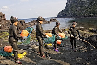 Women in Jeju, South Korea, known as Haenyeo, make a living diving in icy cold water for seafood and seaweed. Tae Seok Moon plans to study whether bacteria plays a role in the tolerance of cold water by these divers and by those in the U.S. military. (Photo credit: iStock photo)