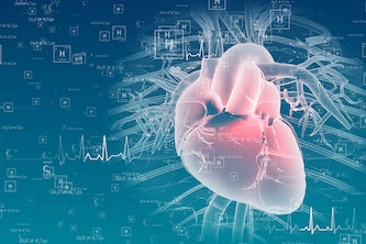 Jonathan Silva and Jeanne Nerbonne led a team that found that two drugs sometimes prescribed to treat arrhythmias affect heart atria and ventricles differently depending on the molecular composition of the sodium channels expressed. (iStock photo)